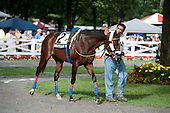 9th Hall of Fame Stakes - Quick Wit