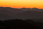 Mediterranean forest covered hills at sunset, Sierra de Andujar Natural Park, Sierra de Andujar, Sierra Morena, Andalusia, Spain