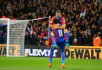 James McArthur celebrates scoring with Wilfried Zaha  during the EPL - Premier League match between Crystal Palace and Liverpool at Selhurst Park, London, England on 29 October 2016. Photo by Steve McCarthy.