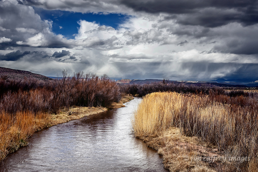 The Jemez River flows through a stand of tamarisk and reeds just north of San Ysidro, New Mexico.
