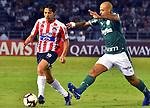 Futbol 2019 Copa Libertadores Atletico Junior vs Palmeiras