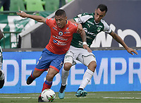 PALMIRA - COLOMBIA, 01-09-2019: Christian Rivera del Cali disputa el balón con Cesar Amaya de Pasto durante partido entre Deportivo Cali y Deportivo Pasto por la fecha 9 de la Liga Águila II 2019 jugado en el estadio Deportivo Cali de la ciudad de Palmira. / Christian Rivera of Cali vies for the ball with Cesar Amaya of Pasto during match between Deportivo Cali and Deportivo Pasto for the date 9 as part Aguila League II 2019 played at Deportivo Cali stadium in Palmira city. Photo: VizzorImage / Gabriel Aponte / Staff