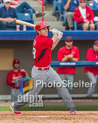 7 March 2015: St. Louis Cardinals infielder Ty Kelly in Spring Training action against the Washington Nationals at Space Coast Stadium in Viera, Florida. The Cardinals fell to the Nationals 6-5 in Grapefruit League play. Mandatory Credit: Ed Wolfstein Photo *** RAW (NEF) Image File Available ***