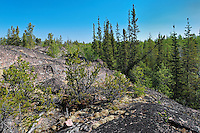 Boreal forest and preCambrian Shield<br />  Yellowknife Highway<br /> Northwest Territories<br /> Canada