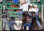 Wild Pony Races during the Reno Rodeo on Sunday, June 23, 2019.