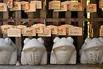 Shinto Shrine Garden