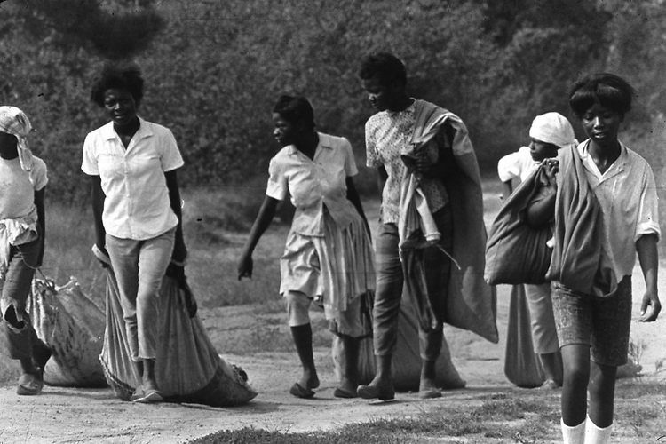 Women and children on way to pick cotton on farm of Minnie Guise in Mt. Meigs, Ala. Photo by Jim Peppler taken for two essays published in The Southern Courier on September 10, and Sept. 17, 1966. Copyright Jim Peppler/1966. This and over 10,000 other images are part of the Jim Peppler Collection at The Alabama Department of Archives and History:  http://digital.archives.alabama.gov/cdm4/peppler.php