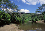 River near Nosara. Nicoya Peninsula.