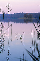 Großer Wummsee, nährstoffarmer und sehr klarer See, Sonnenaufgang, Naturschutzgebiet, Brandenburg, Deutschland