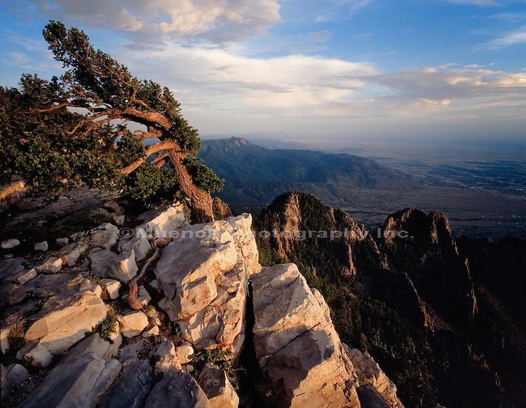 Sandia Crest   NEW MEXICO, Sandia Mountains