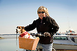 Tilghman Island. Woman riding bike with dog in basket