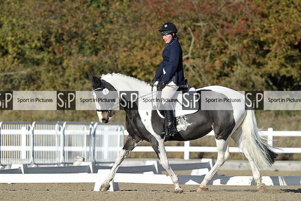 Class 3. Prelim 12. Unaffiliated Dressage. Brook Farm Training Centre. Essex. 06/11/2016. MANDATORY Credit Garry Bowden/Sportinpictures - NO UNAUTHORISED USE - 07837 394578