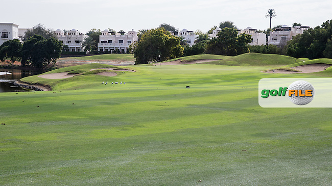9th fairway at The Address Montgomerie Golf Club, Dubai, United Arab Emirates.  27/01/2016. Picture: Golffile | David Lloyd<br /> <br /> All photos usage must carry mandatory copyright credit (&copy; Golffile | David Lloyd)