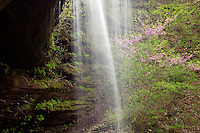 Waterfall in Fall Hollow, Natchez Trace Parkway, Tennessee