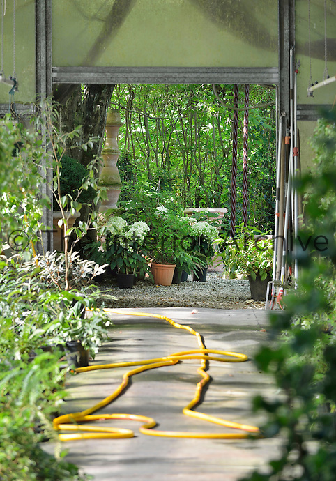 Inside a greenhouse with a view through an open door to a garden beyond.