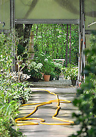Inside a greenhouse with a view through an open door to a garden beyond.