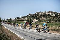 World Champion Alejandro Valverde (ESP/Movistar) & peloton  riding along Faucon<br /> <br /> Stage 17: Pont du Gard to Gap (200km)<br /> 106th Tour de France 2019 (2.UWT)<br /> <br /> ©kramon