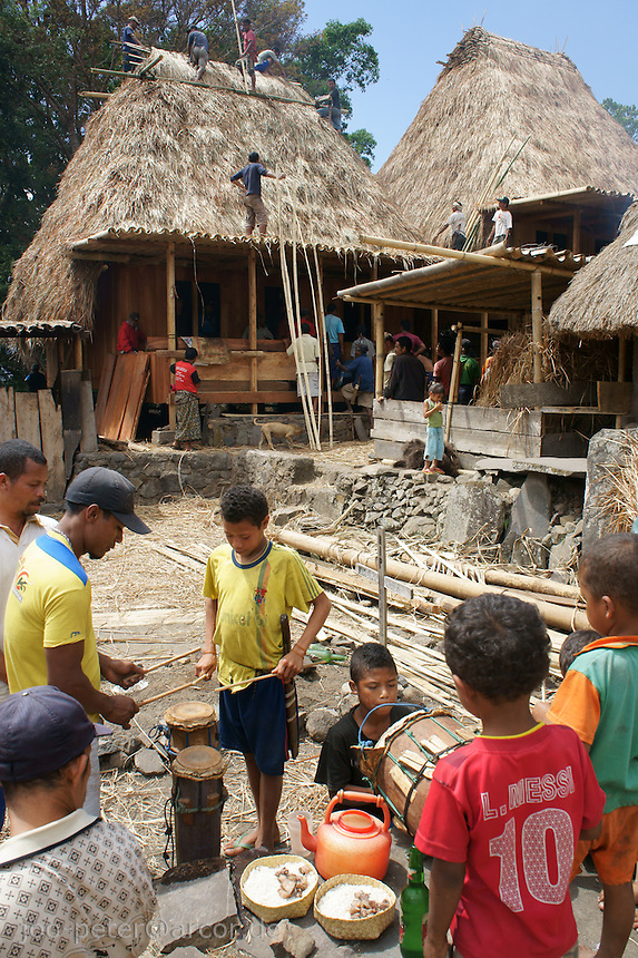 villagers make music, share food in celebrations while last works are done building a new house in the background, a sacred process in this matriarchal society, where the house is center of matrriarchal life and clan-strucure (village Bena, Ngada people, Flores, Indonesia)