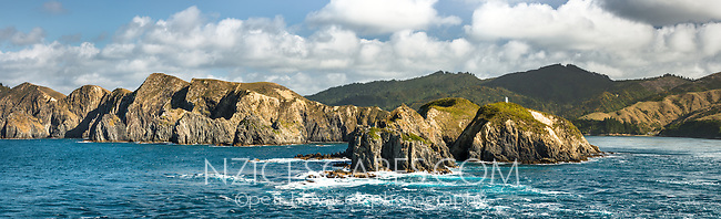 East Head at entrance into Tory Channel in Marlborough Sounds at Cook Strait between North and South Island, New Zealand, NZ