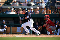 Detroit Tigers second baseman Thomas Field (74) at bat in front of catcher Kevin Fuller (14) during an exhibition game against the Florida Southern Moccasins on February 29, 2016 at Joker Marchant Stadium in Lakeland, Florida.  Detroit defeated Florida Southern 7-2.  (Mike Janes/Four Seam Images)