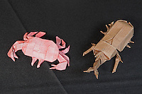 OrigamiUSA Convention 2015 Exhibition. OBC - Origami by Children - section. Japanese Rhinoceros Beetle and Crab designed and folded by Sergio Sanchez, 18, OR.