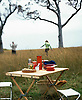 Picnic Tablesetting