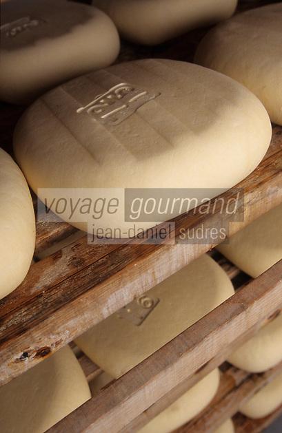 Europe/Espagne/Baléares/Minorque/Alaior : A la Finca son gall - Fabrication du fromage de Mahon - Affinage