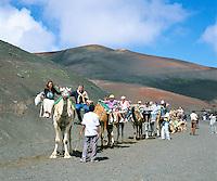 Spain, Canary Island, Lanzarote, Timanfaya National park: camel riding | Spanien, Kanarische Inseln, Lanzarote, Timanfaya Nationalpark: Dromedarreiten durch die Feuerberge