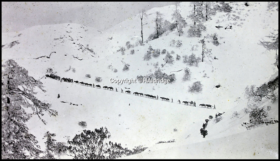 BNPS.co.uk (01202 558833)Pic: HAldridge/BNPS<br /> <br /> Sikh troops climbing the Delap pass into Tibet.<br /> <br /> Game tales from the hills...remarkable album shows British attempts to win over newly invaded Tibet by playing sport's straight from the playing fields of England.<br /> <br /> A collection of photos have come to light which show the people of the remote Himalayan nation of Tibet embracing one of the traditional British pastimes - a sports day.<br /> <br /> The archive of more than 500 photos was collated by a British Lieutenant Colonel, R C MacGregor, of the Indian Medical Service, who was present in Tibet between 1904 and 1912.<br /> <br /> These photos are one of the earliest examples of the British attempting to win 'the hearts and minds' of a native population as they were taken during the controversial Younghusband expedition to the distant Buddhist country.<br /> <br /> The archive also features four never before seen photos of the Dalai Lama returning to Tibet in 1912 after his exile ended.