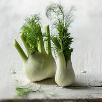 Gastronomie générale/ Bulbe de fenouil doux ou fenouil de Provence - Stylisme : Valérie LHOMME // Gastronomy/ Sweet fennel