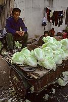 Asie/Chine/Jiangsu/Env Nankin: Marché libre de la rue Shan-Xi - Marchand ambulant de choux chinois<br /> PHOTO D'ARCHIVES // ARCHIVAL IMAGES<br /> CHINE 1990