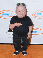 21 September 2016 - Hollywood, California. Verne Troyer. 8th Annual Get Lucky for Lupus LA Celebrity Poker Tournament  held at Avalon Hollywood. Photo Credit: Birdie Thompson/AdMedia
