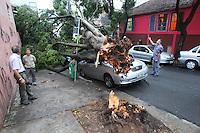 SAO PAULO, SP, 12-01-2014, QUEDA DE ARVORE. Uma arvore caiu sobre dois veiculos na tarde desse domingo (12) na Rua Itarare no bairro da Bela Vista, ninguem ficou ferido. Luiz Guarnieri / Brazil Photo Press.