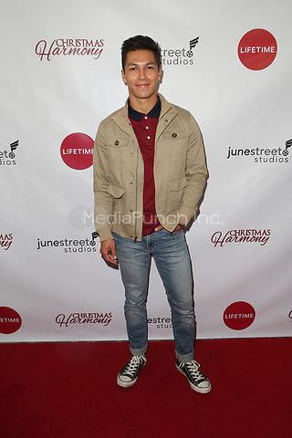 "LOS ANGELES, CA - NOVEMBER 7: Michael Blake Kruse, at Premiere of Lifetime's ""Christmas Harmony"" at Harmony Gold Theatre in Los Angeles, California on November 7, 2018. Credit: Faye Sadou/MediaPunch"