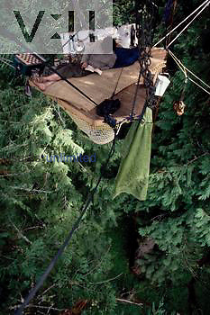 Living one hundred forty feet high in a tree to save the old growth forest from Wineberry timber sale.