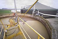 - Gambarana (Pavia) impianto per la produzione di energia elettrica da biomasse presso l'azienda agricola &quot;Castello&quot; di Cesare Pollini; depuratore<br /> <br /> - Gambarana (Pavia) plant for production of electricity from biomass at  &quot;Castle&quot; farm of Cesare Pollini; purifier