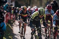 Christopher Juul-Jensen (DEN/Michelton-Scott) up the Molenberg (cobbles)<br /> <br /> Omloop Het Nieuwsblad 2018<br /> Gent &rsaquo; Meerbeke: 196km (BELGIUM)