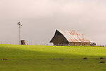 Wood barn, corrugated roof, Aermotor windmill with collapsed windwheel in California's Central Valley.