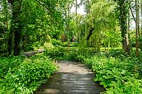 France, Indre-et-Loire (37), Amboise, Jardin et Château du Clos Lucé, polyèdre régulier dessiné par Léonard de Vinci et reproduction géante dans les arbres, Léda et le Cygne