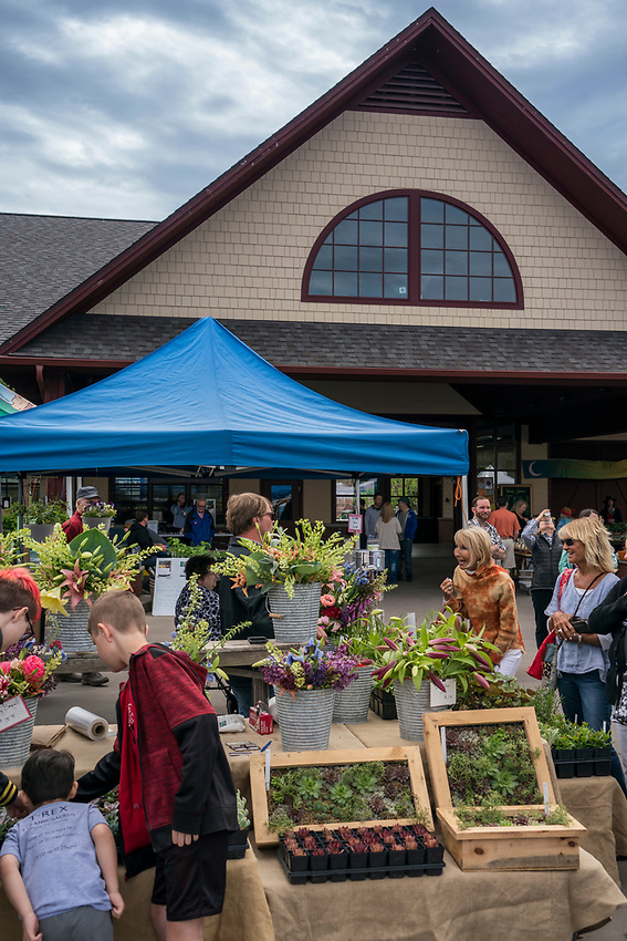 The weekly Farmers Market in Marquette, Michigan.