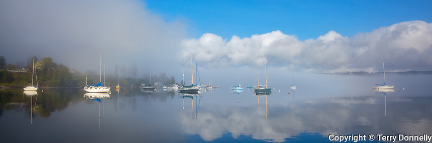 Vashon-Maury Island<br /> Clearing morning fog with moored sailboats at Dockton - Quartermaster Harbor