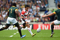 Ayumu Goromaru of Japan puts in a grubber kick. Rugby World Cup Pool B match between South Africa and Japan on September 19, 2015 at the Brighton Community Stadium in Brighton, England. Photo by: Patrick Khachfe / Stewart Communications