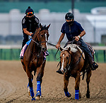 September 1, 2020: Gamine exercises as horses prepare for the 2020 Kentucky Derby and Kentucky Oaks at Churchill Downs in Louisville, Kentucky. The race is being run without fans due to the coronavirus pandemic that has gripped the world and nation for much of the year. Scott Serio/Eclipse Sportswire/CSM