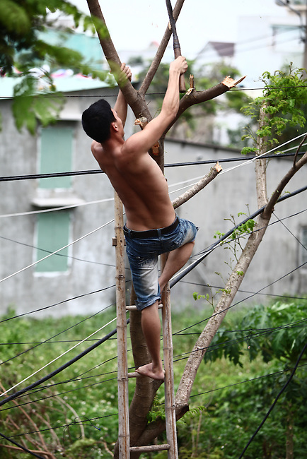 A man chops down limbs from a tree in to keep it from hitting his house  Saturday in Da Nang, Vietnam, in preparation for Super Typhoon Haiyan, expected to hit the city around 4 a.m. Sunday. Local authorities announced they were evacuating 20,000 people in vulnerable areas in advance of the storm and advised others to stay inside their houses.