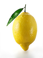 Fresh whole lemons with leaves