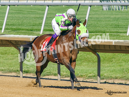 Our Princess winning at Delaware Park on 5/23/15