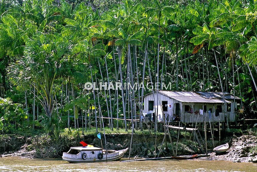 Mata de palmeira e casa, Ilha de Marajó. Pará. 2004. Foto de João Caldas.