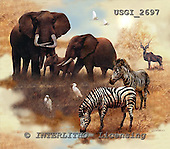 GIORDANO, REALISTIC ANIMALS, REALISTISCHE TIERE, ANIMALES REALISTICOS, paintings+++++,USGI2697,#A#