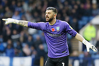 Keiren Westwood of Sheffield Wednesday in action during the Sky Bet Championship match between Sheffield Wednesday and Swansea City at Hillsborough Stadium, Sheffield, England, UK. Saturday 09 November 2019