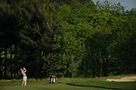 2010 M DIII Golf